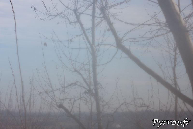 Les effets de la condensation peuvent nuire à la qualité de la photo