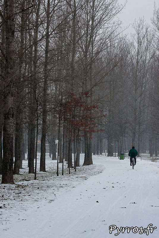 Toulouse sous la neige pour la troisieme fois de l'hiver