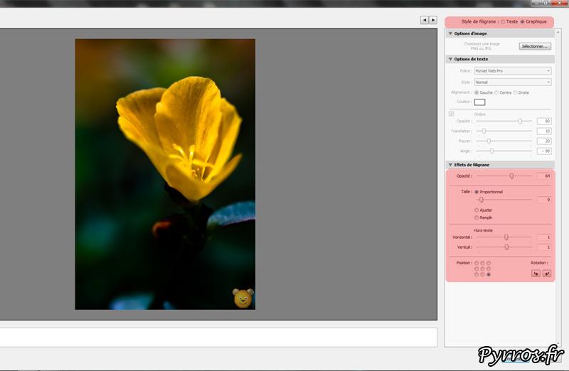 Utiliser une image pour le filigrane