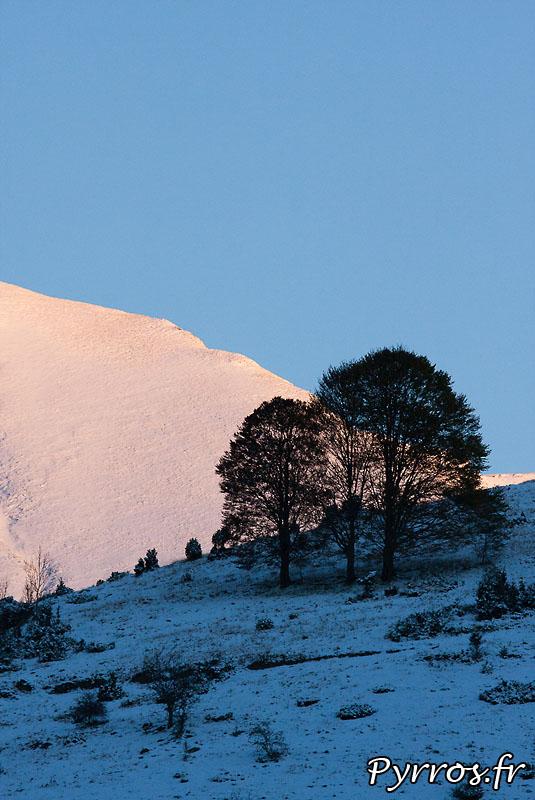 Premieres neiges, automne 2010