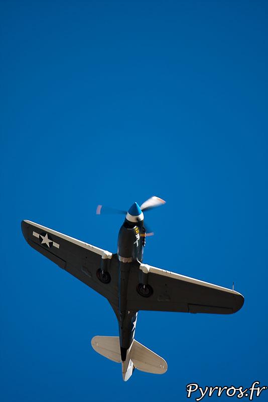 Curtiss P-40 Warhawk, en vol