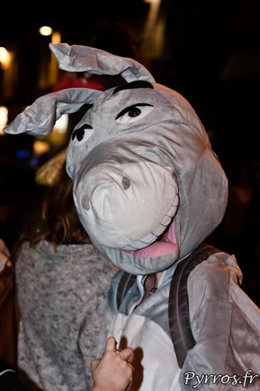 L'ane du Carnaval de Toulouse