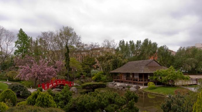 Pavillon de thé et pont rouge du Jardin Japonais de Toulouse