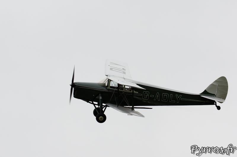 De Havilland DH.87 Hornet Moth en virage à Airexpo 2012