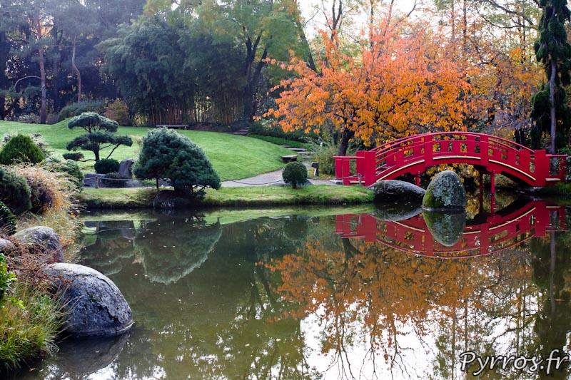 Automne au jardin Japonnais de Toulouse, reflet dans la mare