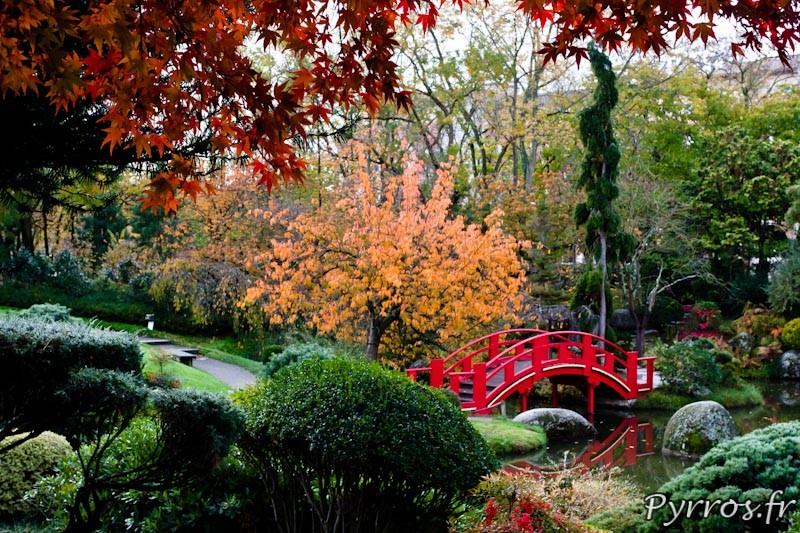 Automne au jardin Japonnais, encadrement automnale du pont rouge