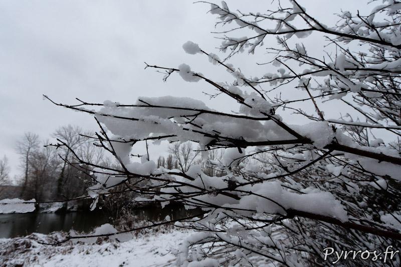 Jardin de la Maourine la végétation est sous la neige