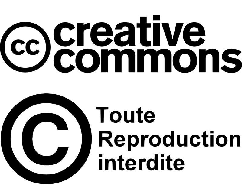 Créative Common ou Copyright certains traitres n'hésitent pas à redistribuer vos photos en affichant ces logos
