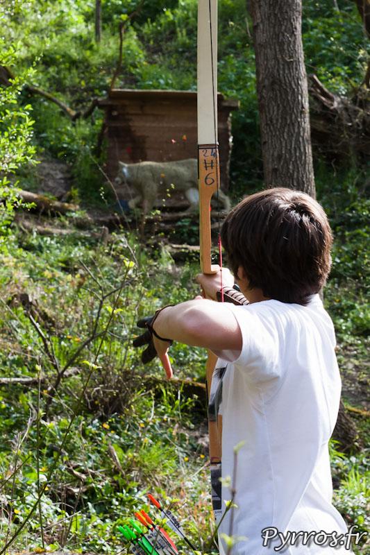 Le lynx est une espèce protégée, pourtant les archers prennent souvent celui-ci pour cible
