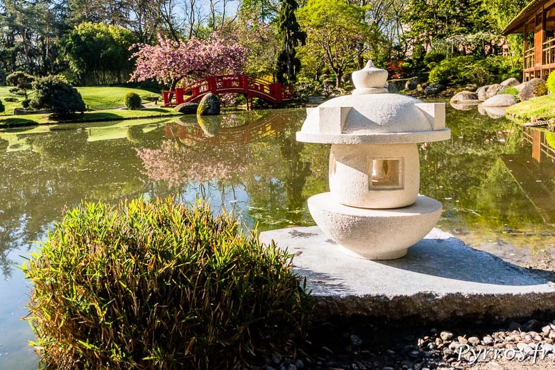 Face au pont rouge une lanterne est fraichement installé par les services d'entretiens du Jardin Japonais de Toulouse