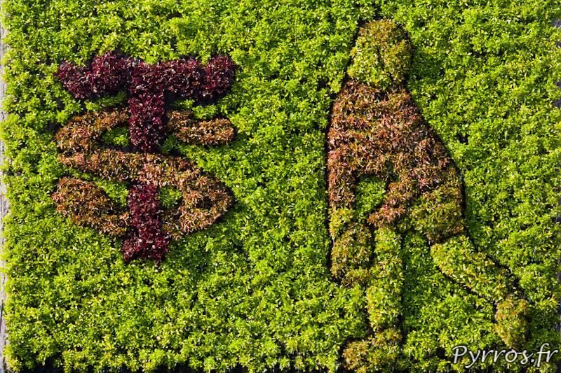 Mosaiculture végétale, stade Toulousain