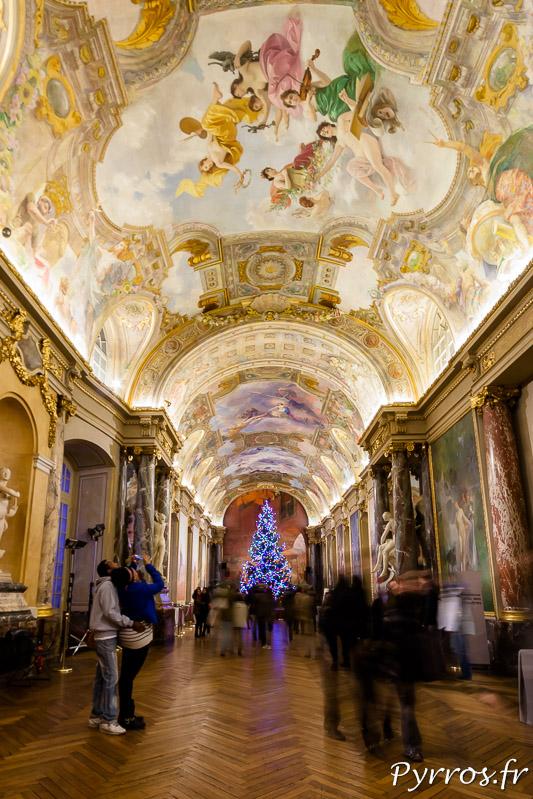 Salle des illustres au Capitole un Sapin Lumineux trône fièrement