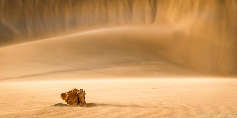 Plage de dunes à Boa Vista (Cap Vert) par Christophe Gressin