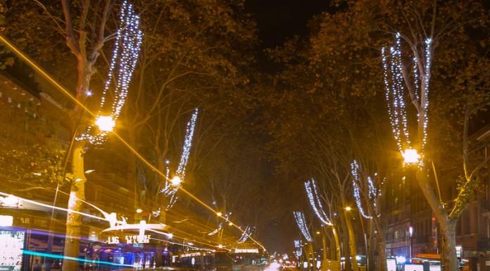 Les arbres des boulevards de Toulouse sont habillés de guirlandes lumineuses
