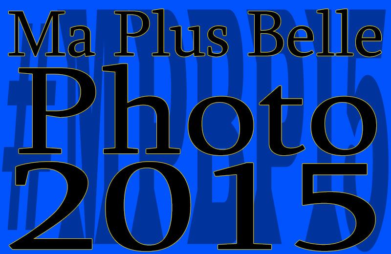"""""""Ma Plus Belle Photo de l'Année 2015"""" #MPBP15"""