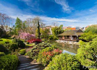 Le jardin Japonais de Toulouse au printemps