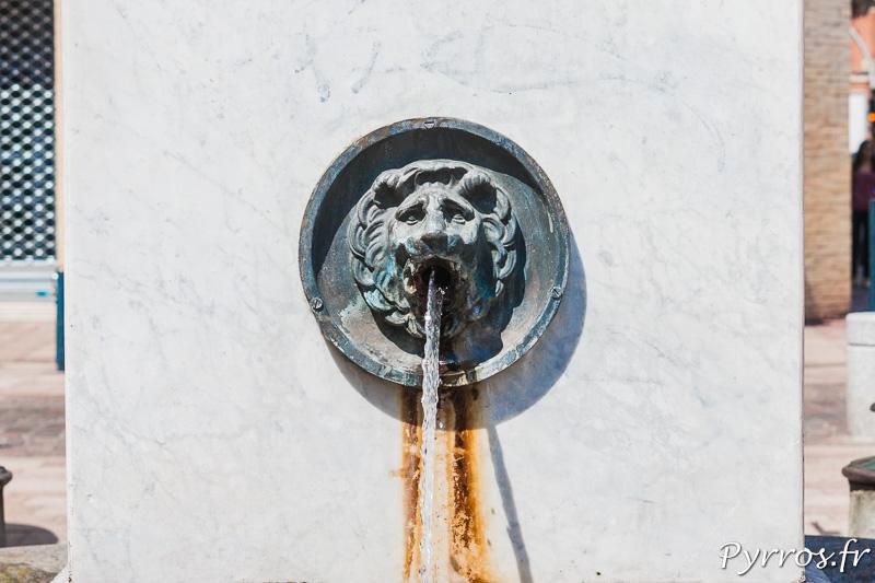 Détail de la fontaine de la place Rouaix