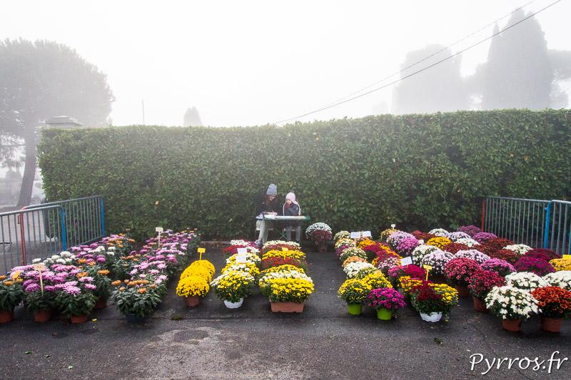 Un stand de fleur est installé sur le petit parking du cimetière