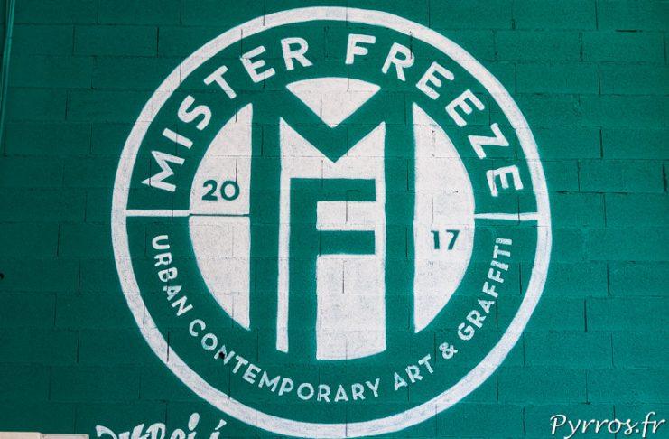 Mister Freeze 2017 Art contemporain à Toulouse