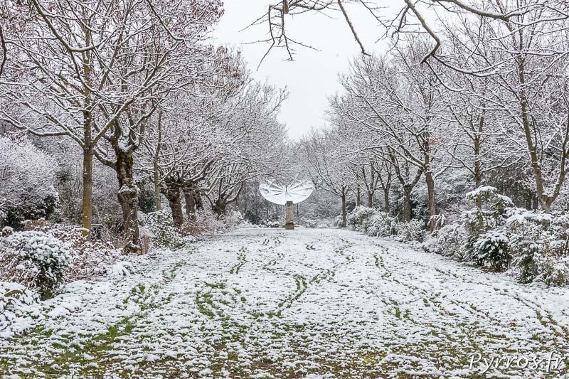 des traces ont été laissé par des marcheurs et des animaux dans la neige du Parc de l'observatoire