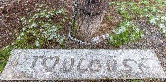 Le nom de Toulouse est inscrit dans la neige