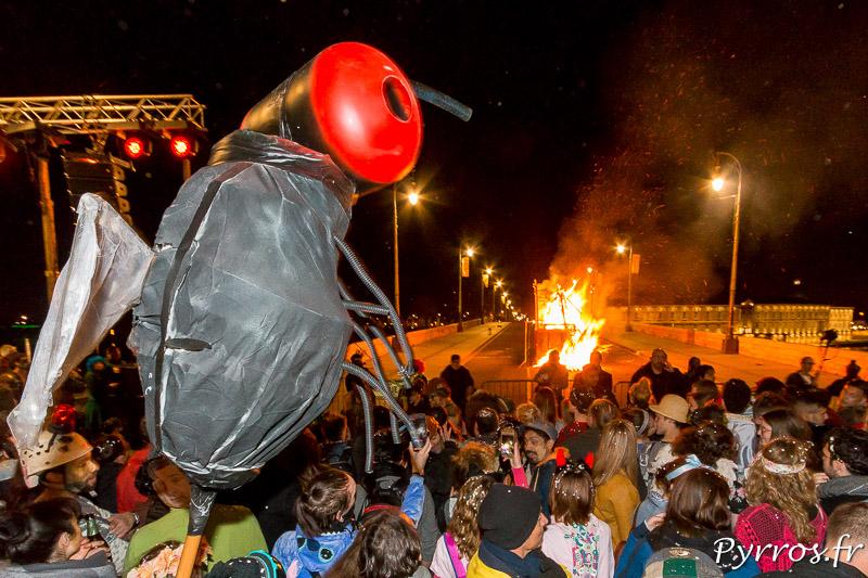Une mouche observe la crémation de Madame Carnaval 2018 de Toulouse