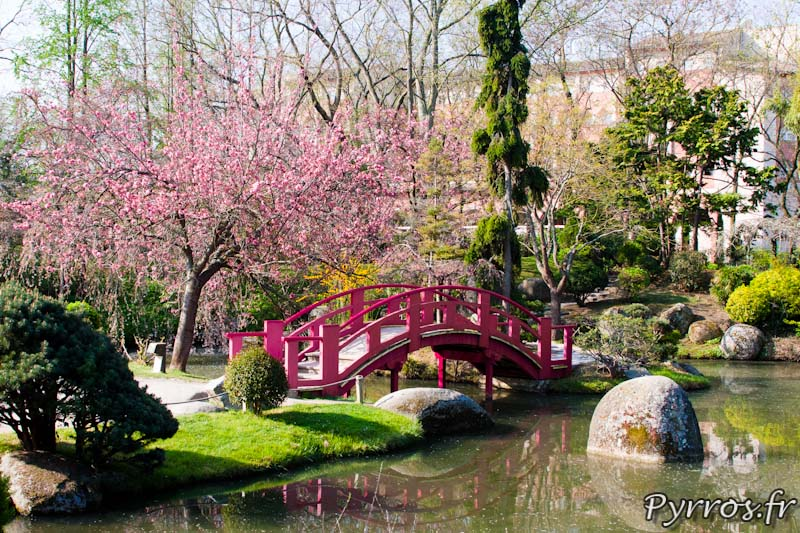 Printemps au jardin japonais de toulouse for Salon de jardin toulouse