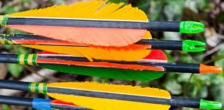 Collection de flèches colorées sur le terrain de Pech David