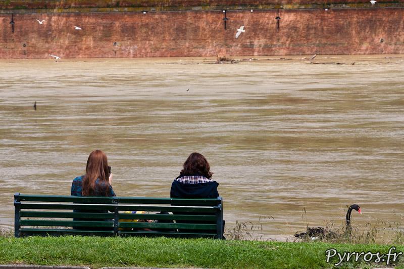 Les toulousaines ont les pieds dans l'eau alors que la Garonne s'invite sur la prairie de filtres