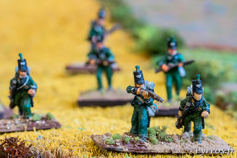 Fusiliers solitaires
