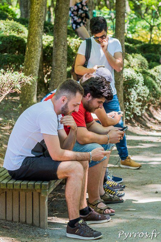 Un groupe de dresseurs de pokemon se concentre pour attraper les pokemons