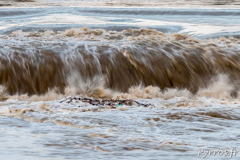 La Garonne charrie des déchets qui s'agglomèrent