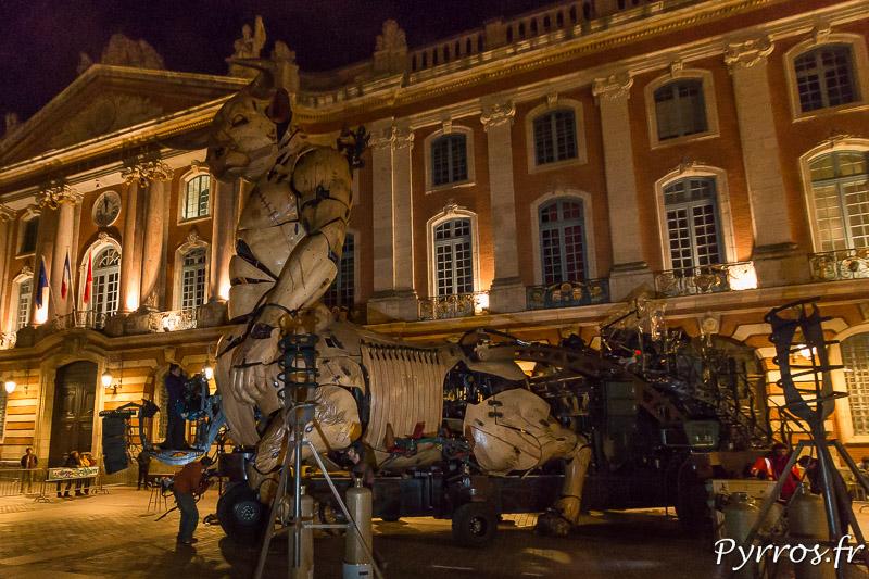 Dans la nuit le minotaure prend s'installe place du Capitole à Toulouse