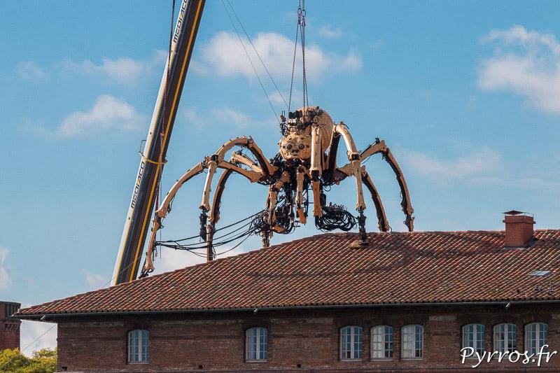 Ariane l'araignée sur le toit de l'Hotel Dieu à Toulouse scrute les toulousains