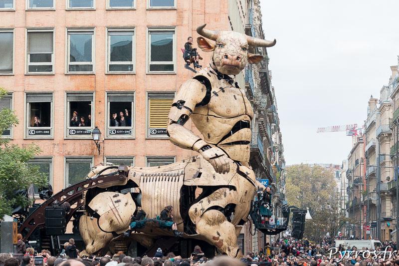 Le minotaure Asterion scrute la rue Alsace Lorraine