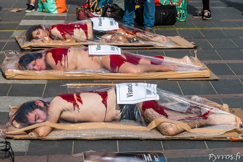 L214 propose différentes barquettes de viande humaine